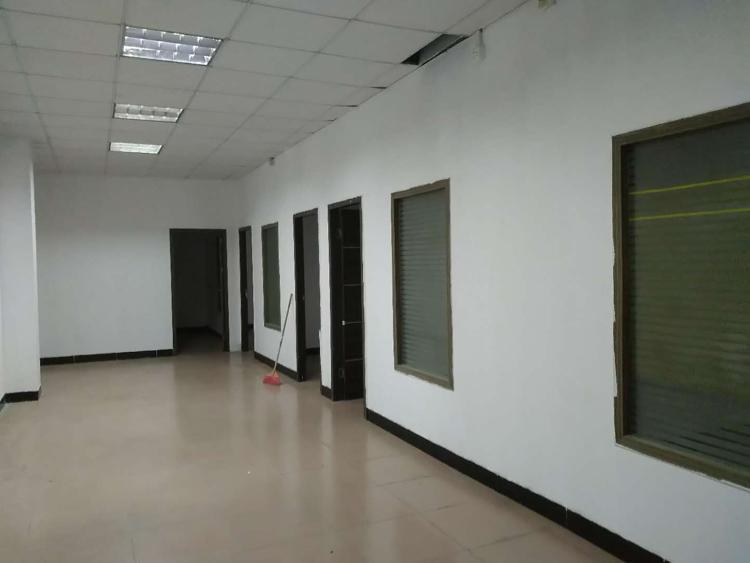 天河公园天河西广棠西路有600平办公室招租