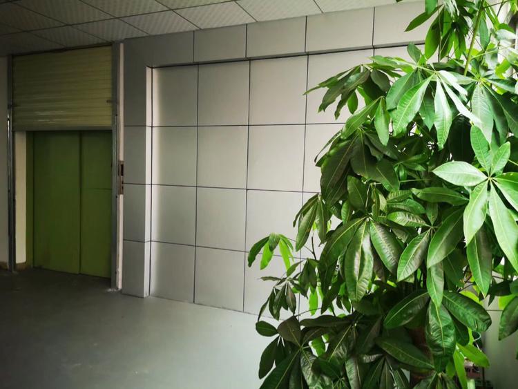 福永800平方外贸厂房出租