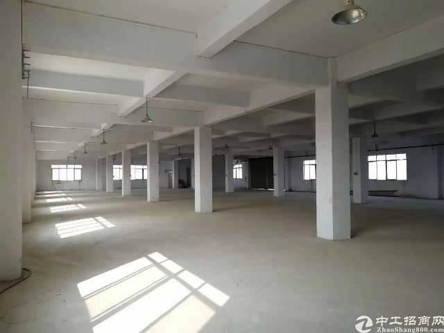 博罗县福田镇豪华装修办公室标准厂房15000平只要10元