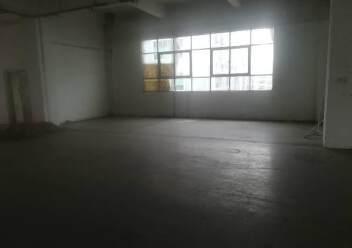 公明楼村大型园区新出楼上1200平图片6