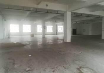 公明楼村大型园区新出楼上1200平图片2