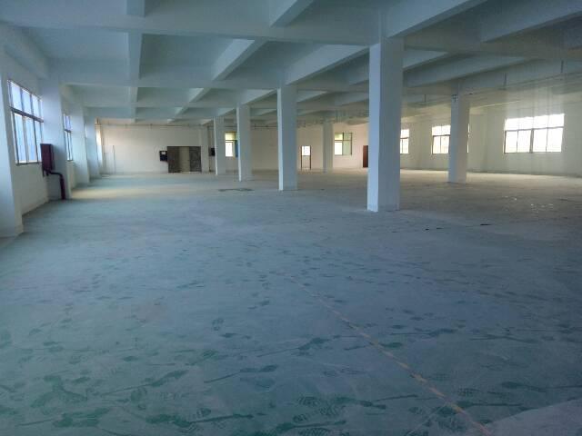沙井沙三新出楼上厂房1900平方招租