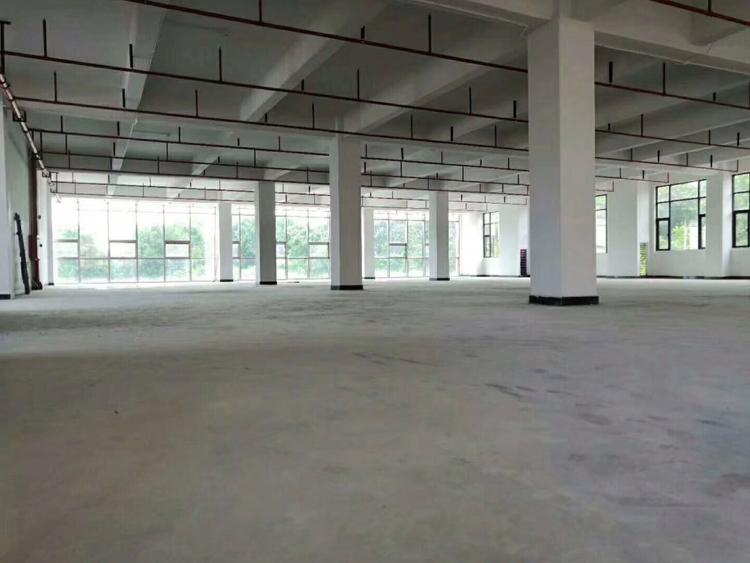 常平镇占地1350m²建筑1300m²厂房出