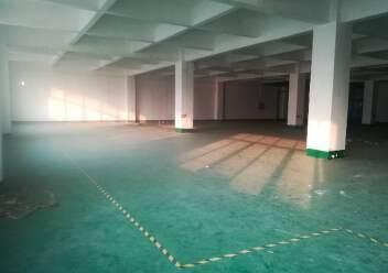 公明西田新出楼上600平厂房图片3