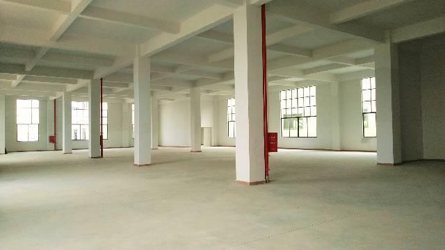 厂房位于惠阳新圩镇塘口205国道大路边,