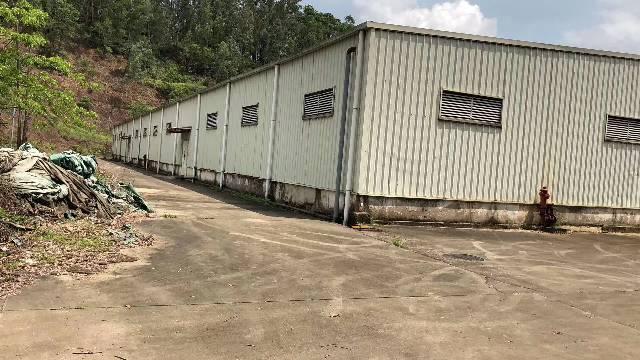 平湖清平高速出口钢构仓库60000平出租可分