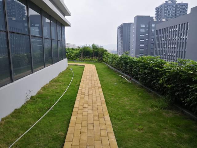 出租龙岗中心城1500平带空中花园办公室
