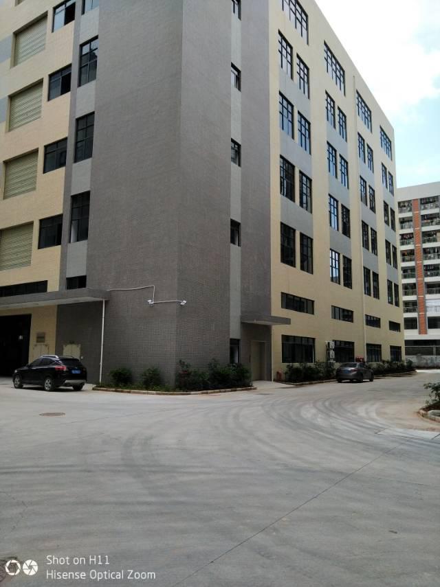 惠阳沙田全新红本独栋标准厂房一楼带牛角2680平出租-图3