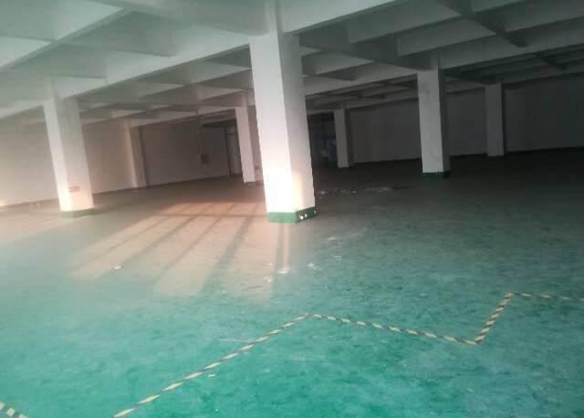 公明西田新出楼上600平厂房
