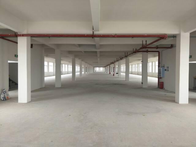 黄陂汉口北1225平米厂房出售,产权清晰可办证