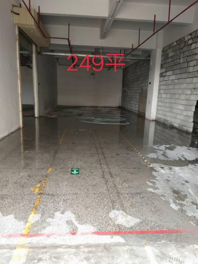 福永107国道旁标准厂房出租