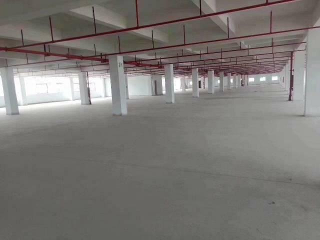 虎门新出带红本厂房总面积13000平报17元全新喷淋消防-图4