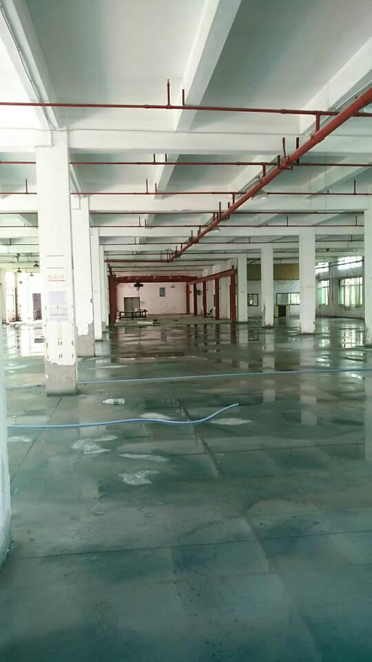 清溪新出独栋厂房出租,两层4400平,宿舍500平.