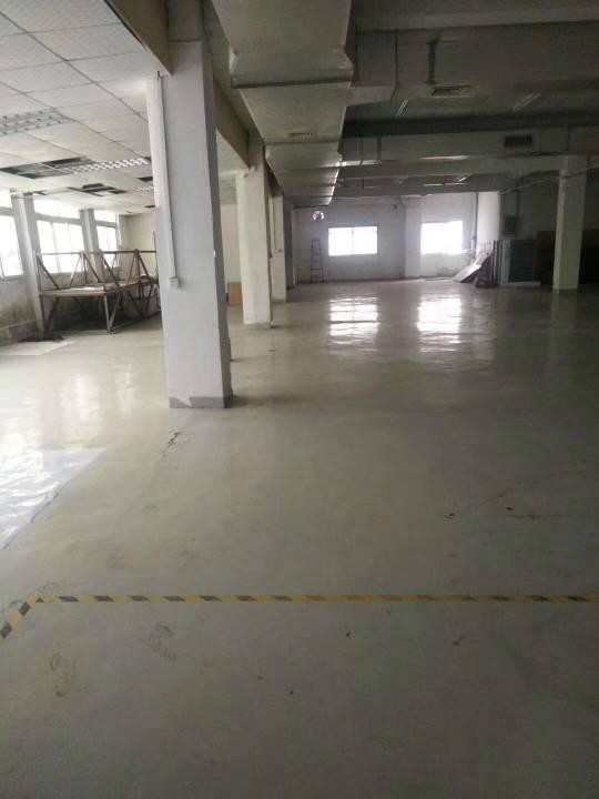 布吉下水径红本独院一楼1400平厂房出租