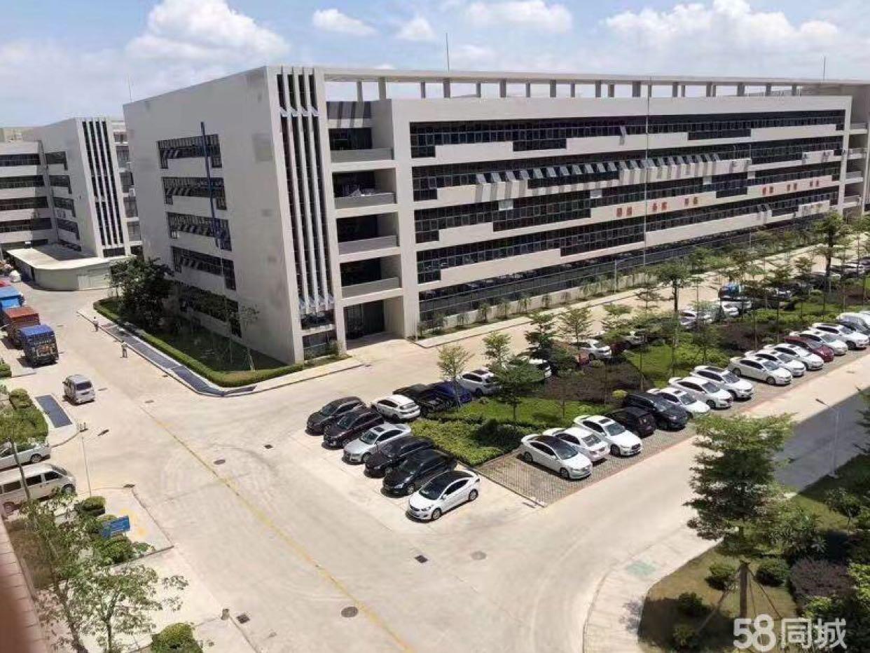 福永桥头工业区3万平方大型红本厂房出租分300起分-图2