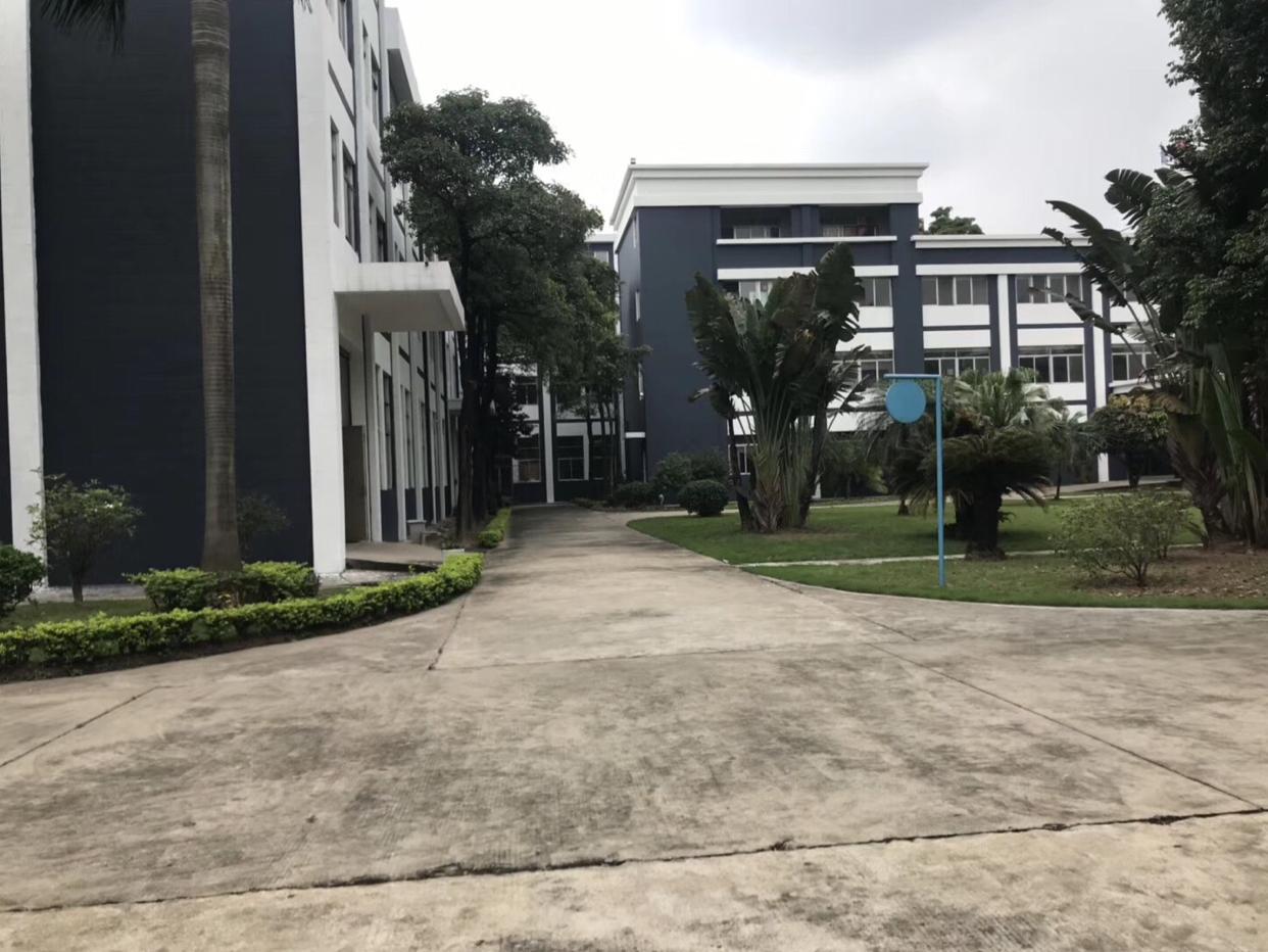 东莞沙田新出独门独院45000平方标准厂房招租,大小可分租