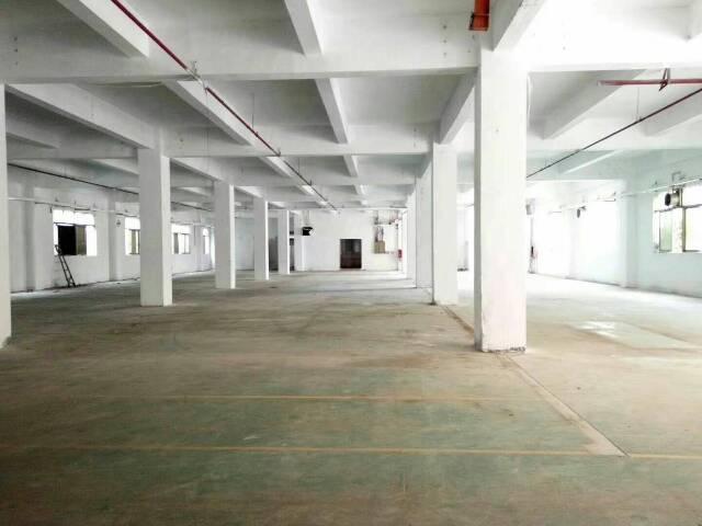 光明新出一楼标准厂房1500平方,带有独立办公室,配有宿舍