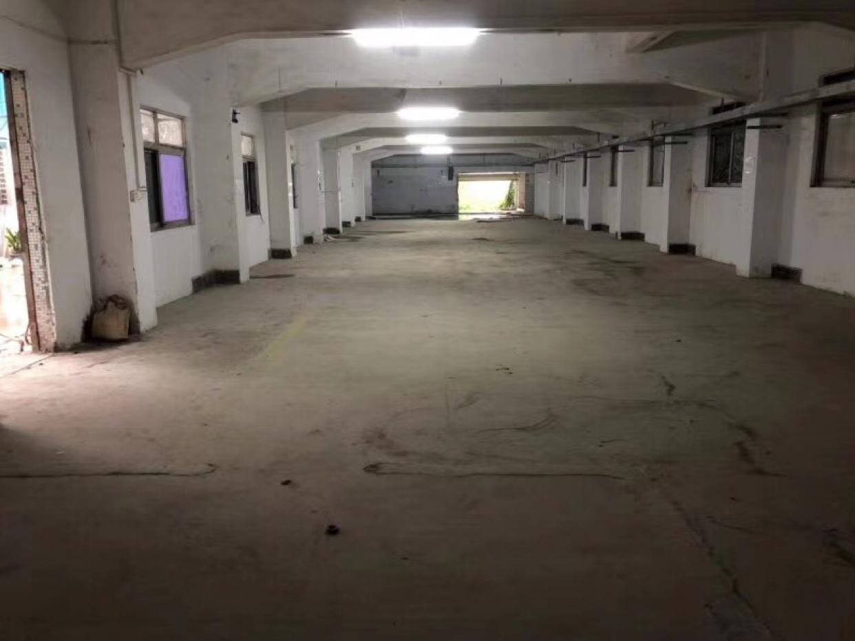 塘厦新出一楼580平仓库厂房出租