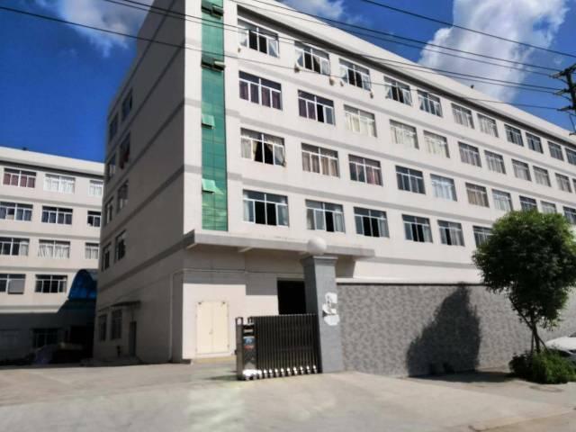 清溪三中5万平方厂房,面积实量大小可分500平起租-图3