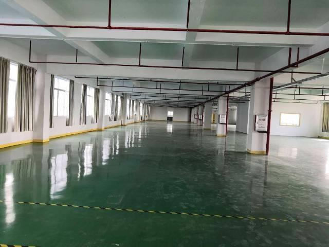 清溪三中5万平方厂房,面积实量大小可分500平起租-图4
