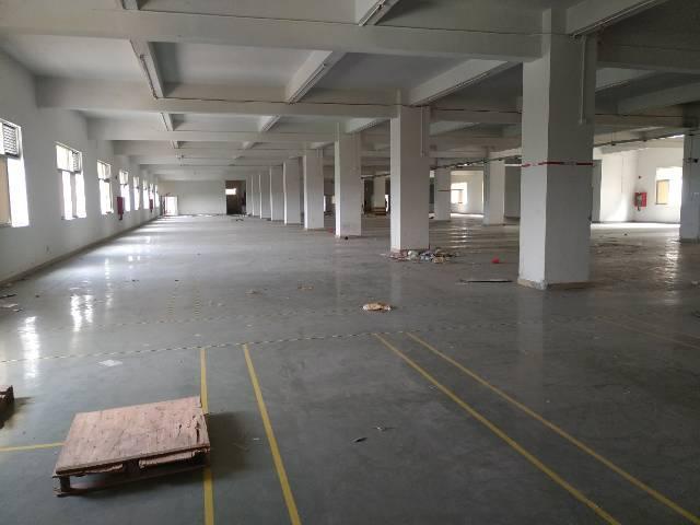 西乡黄田107国道边2500平方米厂房出租