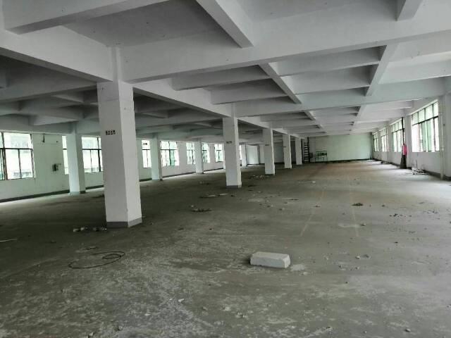 惠州仲恺高新区独院厂房8000平-图3