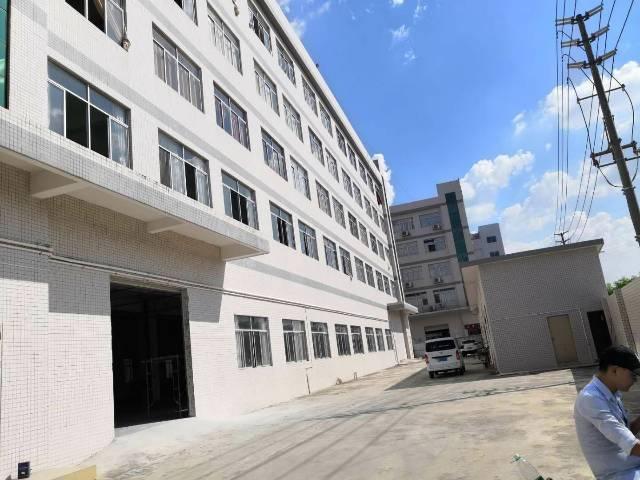 清溪三中5万平方厂房,面积实量大小可分500平起租