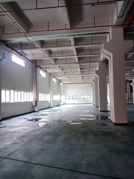 新建标准厂房出租可以分租