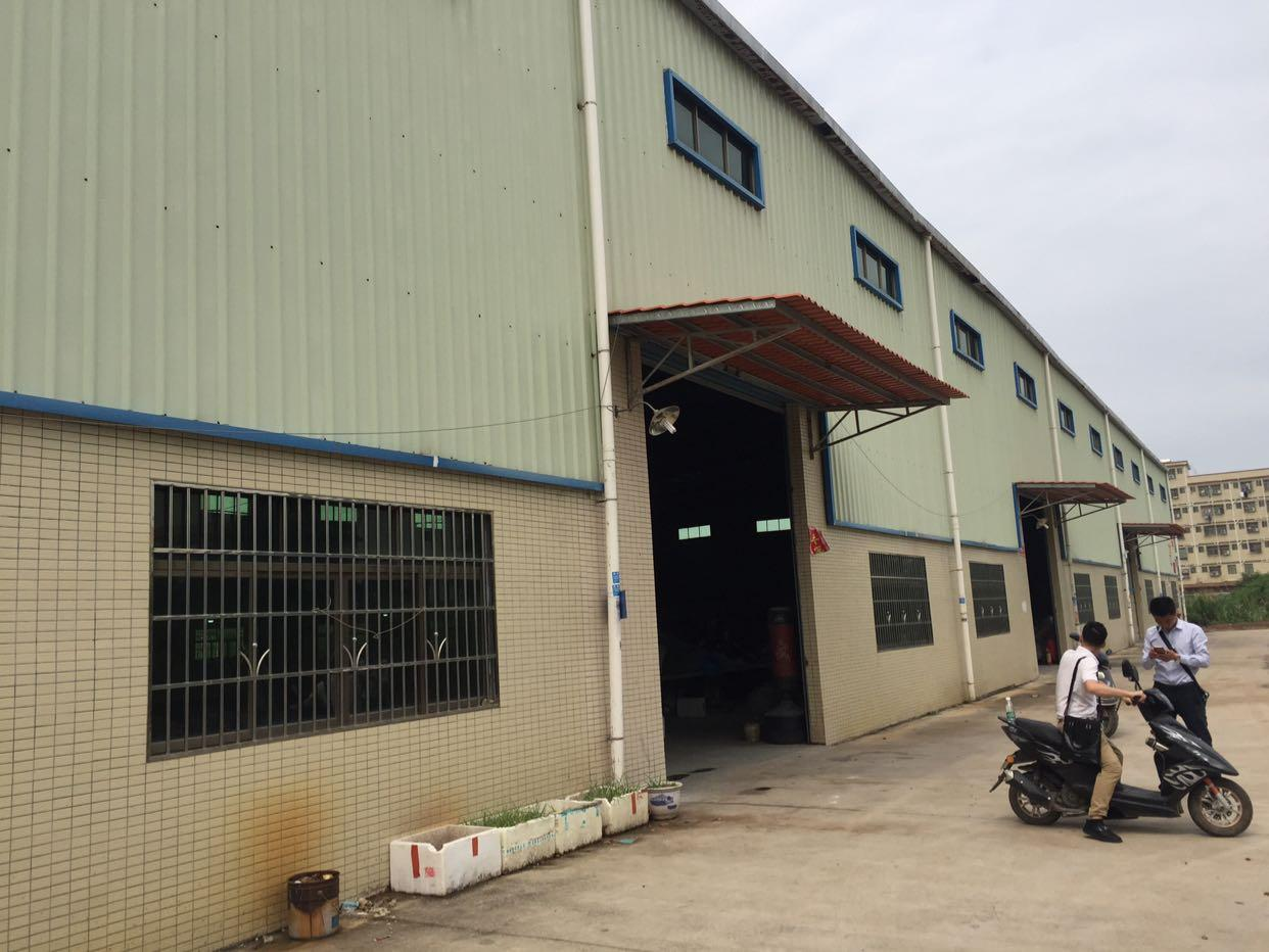 园洲最新单一层新建钢结构厂房面积8400平方米,大小可分租