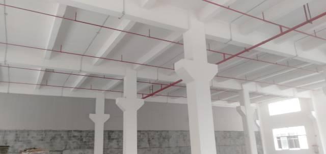 茶山新空出一楼标准厂房出租