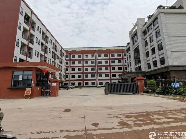 惠城区全新厂房招租原房东无公滩