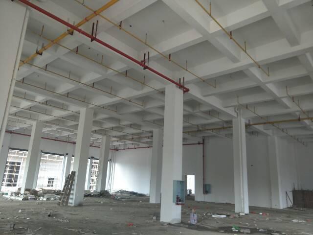 黄陂盘龙城工业独栋厂房,行业不限,成熟地段,配套齐全