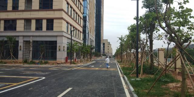 海珠区新港20000平厂房招租,5000起分租,带红本,-图2