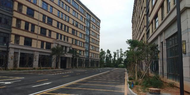 海珠区新港20000平厂房招租,5000起分租,带红本,-图8