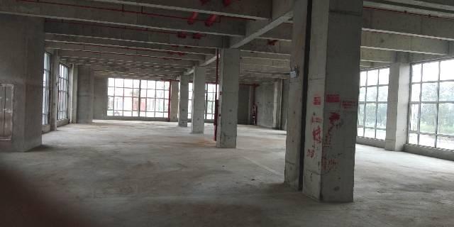 海珠区新港20000平厂房招租,5000起分租,带红本,