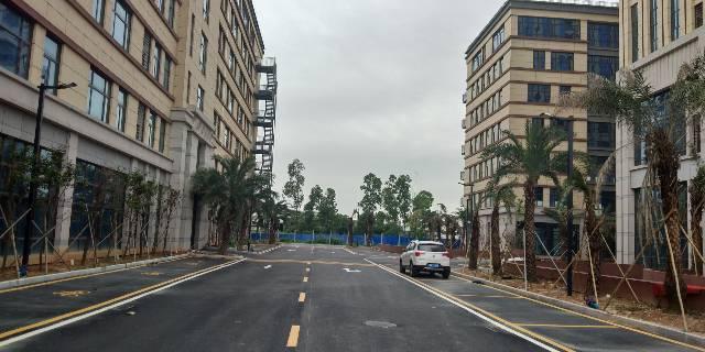 海珠区新港20000平厂房招租,5000起分租,带红本,-图5