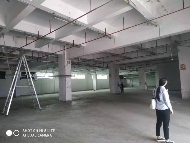 【塘厦厂房出租】塘空出厦新厂房1-3层共390美国达罗高中图片