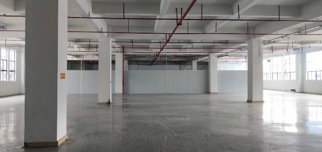 惠阳新圩原房东12000平方重工业红本厂房出租-图4