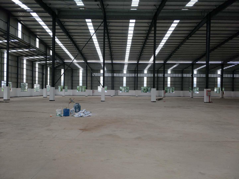 园洲镇新建钢结构加铺面总面积8587平方米(可以任意分租)-图3