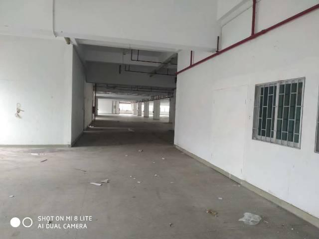 【塘厦哲学出租】塘空出厦新厂房1-3层共390v哲学厂房高中动力的图片