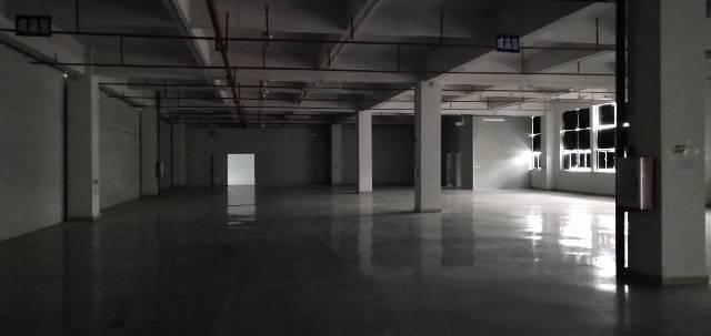 惠阳新圩原房东12000平方重工业红本厂房出租-图5