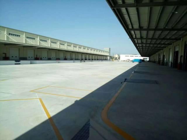 增城区新出物流园生鲜冷冻仓库单一层钢构招租,总面积1.9万平