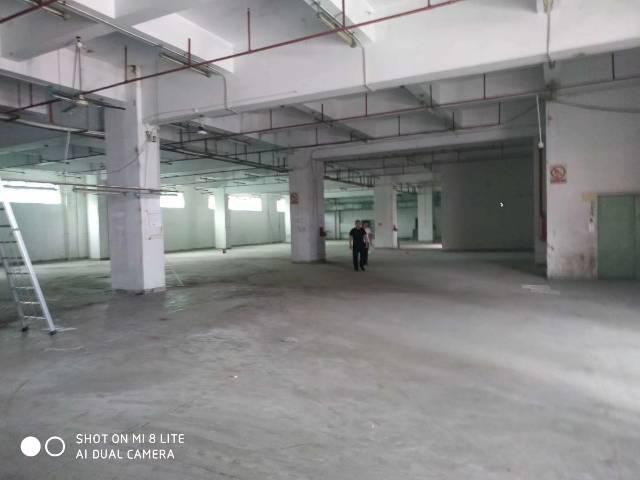 【塘厦高中排名】塘空出厦新厂房1-3层共390出租厂房私立新泽西图片
