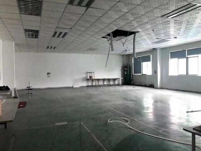 【塘厦视力出租】塘空出厦新厂房1-3层共390厂房高中女生3·0图片