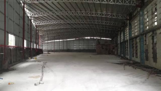 黄埔标准仓库出租小面积可分租共5000平米