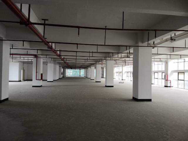 惠州仲恺高新区潼桥标准独院厂房6000平方出租-图2