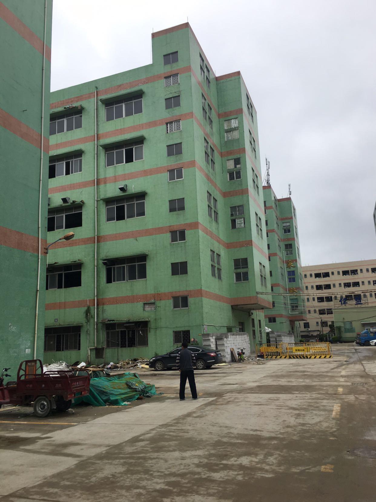 布吉丹竹头地铁站附近新出楼上整层2000平方可分租