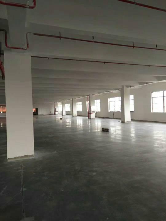 东莞新出独门独院全新标准厂房4层14000平方宿舍6层