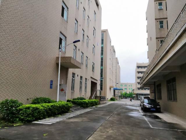 仲恺高新区新出标准厂房一楼招租2800平方