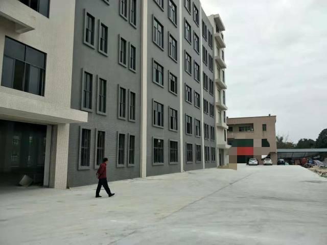 樟木头裕丰工业区全新标准厂房1000平方招租